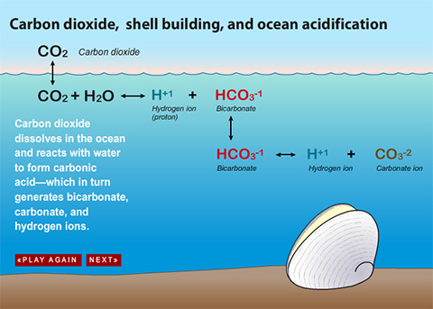 Does water affect carbon dating
