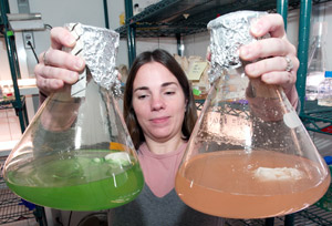 Kristen Rathjen with flasks of marine microbe cultures