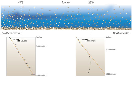 Thorium-230 is produced throughout the oceans by the radiocactive decay of a naturally occuring isotope of uranium and chemically adheres to marine particles that sink to the seafloor.
