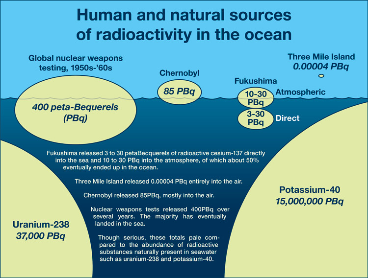 Human and natural sources of radioactivity in the ocean