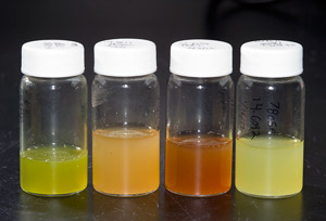 Microbial extracts of various colors in vials