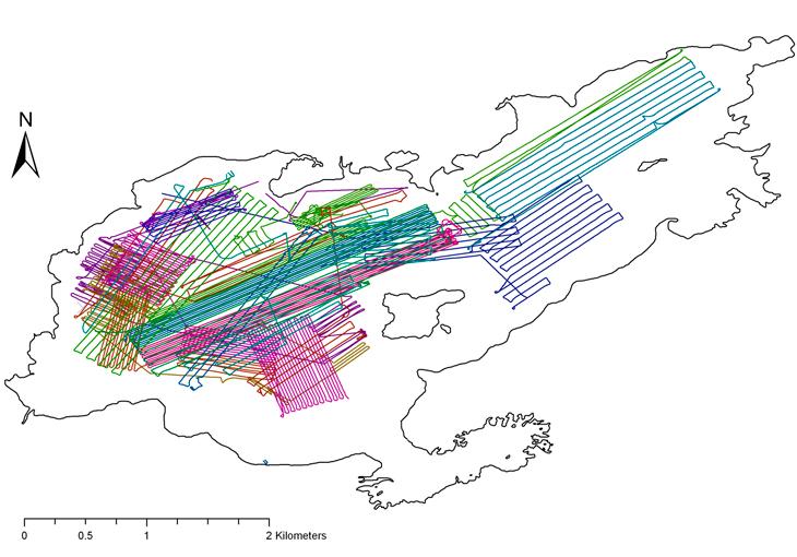 map showing tracks taken by REMUS vehicles in Lake Rotomahana