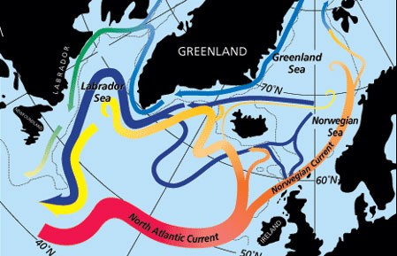 North Atlantic's Transformation Pipeline Chills and Redistributes Subtropical Water