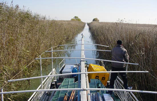 geologists dig into Danube Delta sediments