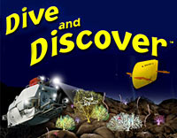 Dive and Discover