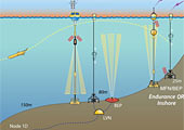 Schematic of the Endurance Array Newport Line