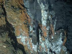 high temperature hydrothermal activity, mariner vent field, lau basin