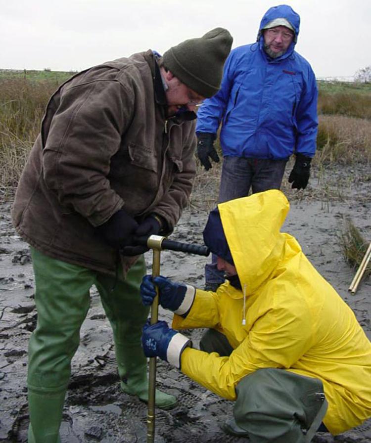 Giosan taking core in Danube delta