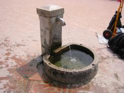 Artesian well in Venice