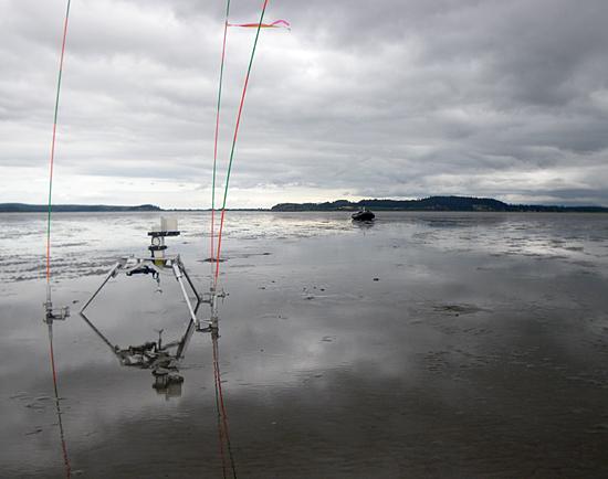 tripod at skagit tidal flat