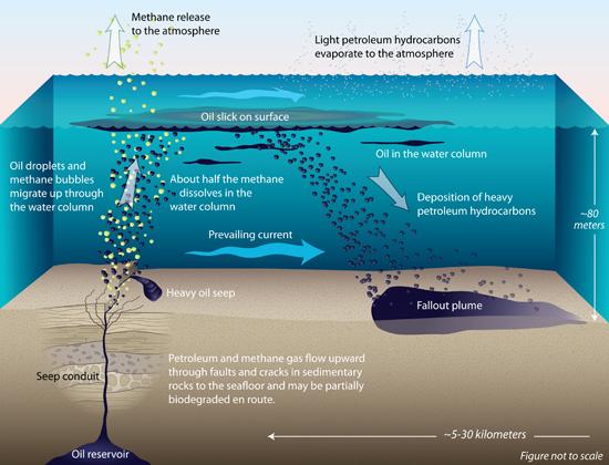 natural oil seep diagram