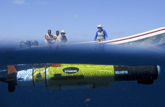 The REMUS 100 autonomous underwater vehicle works just below the surface in Glover's Reef Marine Reserve off Belize, while the crew (Faegon Villanueva and Tyrone Lambert, from Belize; and Glen Gawarkiewicz and Harvey Walsh from WHOI) watch from the launch boat. Their effort was part of a study of the larvae of the Nassau grouper, how they are dispersed, and what that means for the connectivity of the populations on various reefs (led by Simon Thorrold). The REMUS vehicle was used to map the bathymetry (shape, depth, and topography) of the seafloor and the water properties around Glover's Reef.