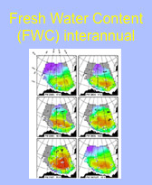 Fresh Water Content (FWC) interannual
