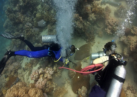 coring coral