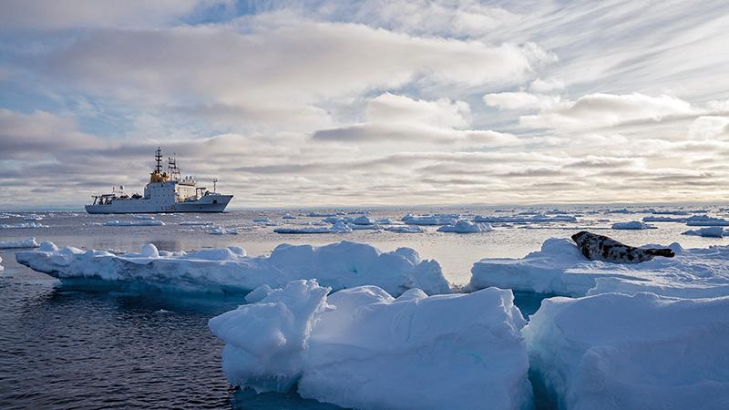 Alliance near sea ice
