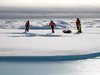 Sampling on sea ice