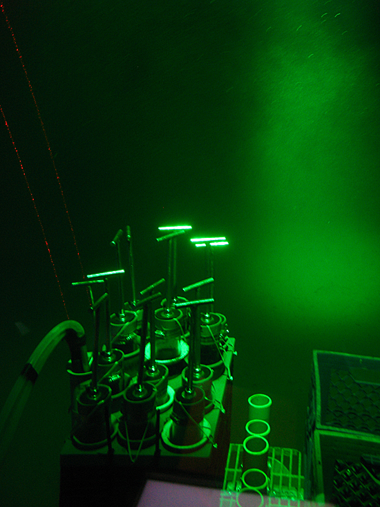 Alvin's new Green LED light (penetrates water better), and red lasers.