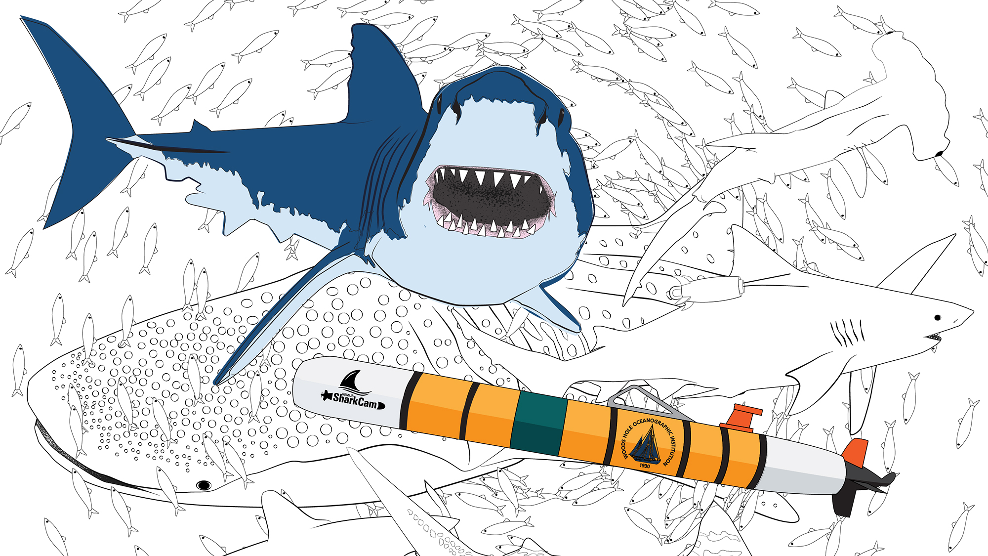 Newsletter Sign Up Coloring Page : Woods Hole Oceanographic Institution