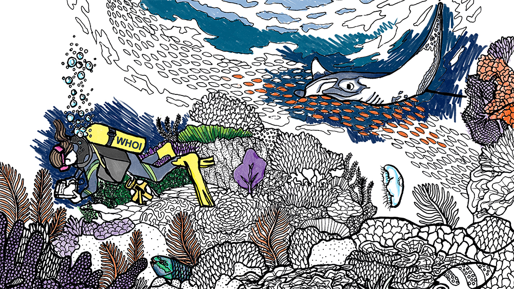 whoi coloring page