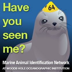 Marine Identification Network