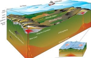 Earth's Complex Complexion