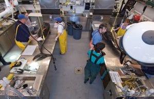 Mass Strandings Keep New Marine Mammal Facility Busy