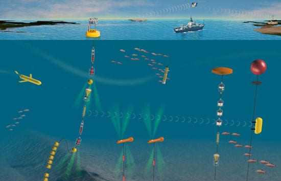 Scientists Gear Up to Launch Ocean Observing Networks