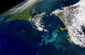 Follow the Carbon Trail