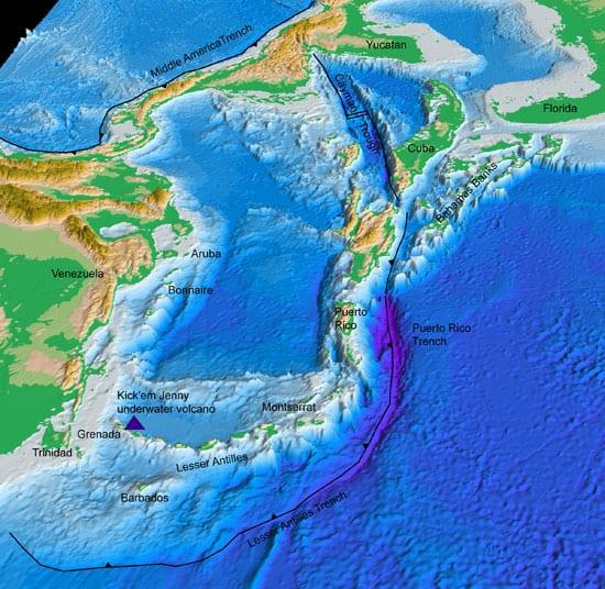 map1_nest_45691.jpg