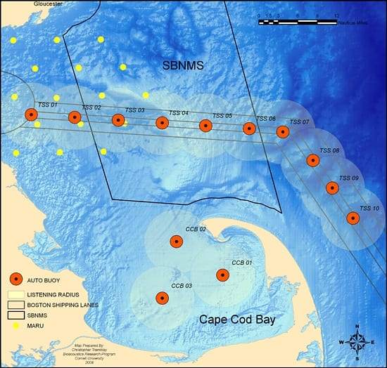 Map of right whale buoys