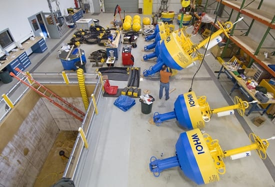 whale buoys in shop