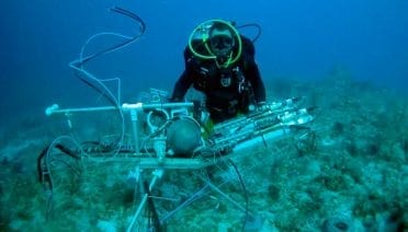 A Deep-sea Chemical-Sniffing Bloodhound
