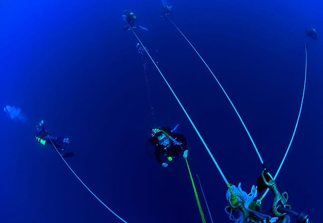 Blue-water divers