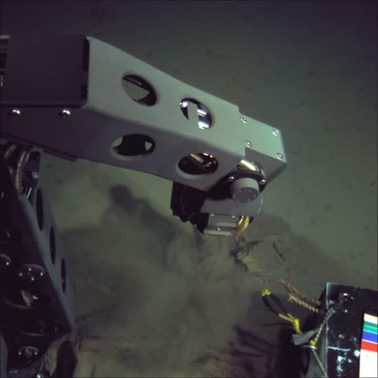 Nereus at Challenger Deep