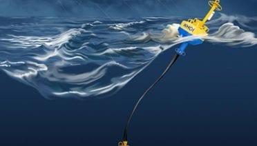 Buoys Help Avert Whale-Ship Collisions