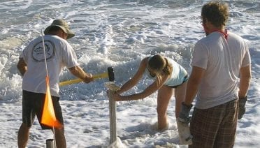 Shifting Sands and Bacteria on the Beach
