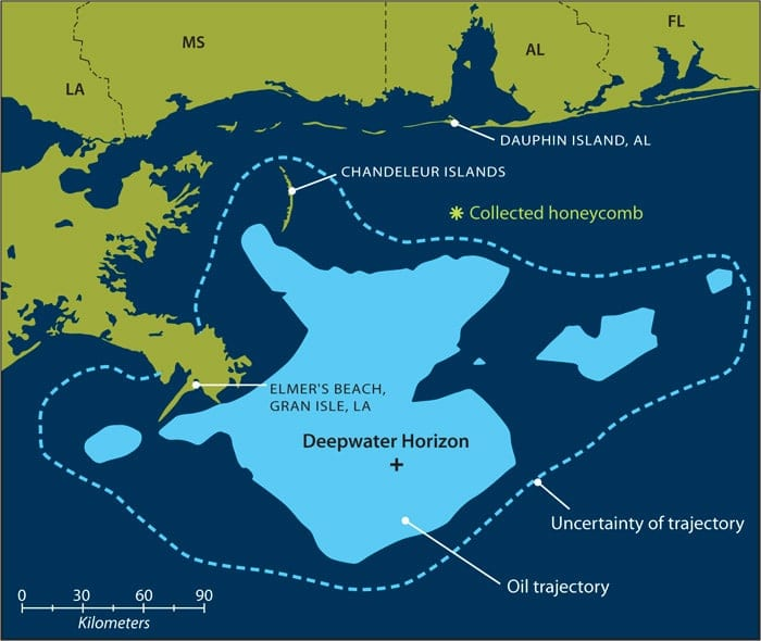 map of Gulf sampling locations