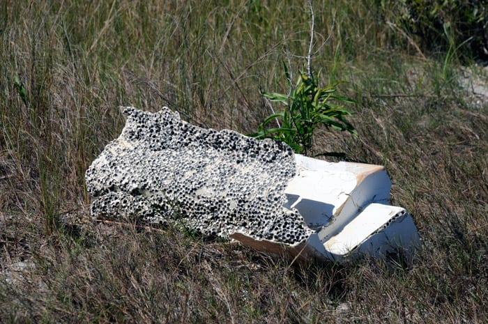 stone300_199874.jpeg