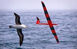 A Robotic Albatross?