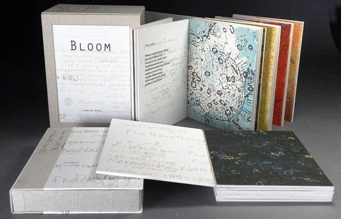 Bloom01n_281413.jpg