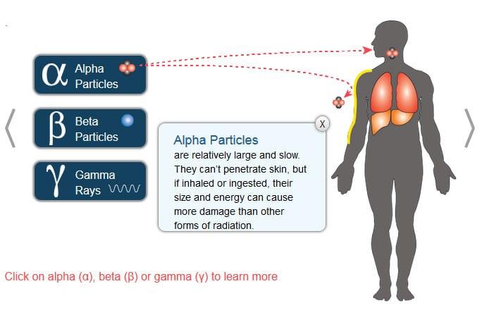 Radiation Health Risks