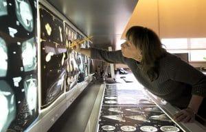 Marine Mammals Meet Modern Medicine