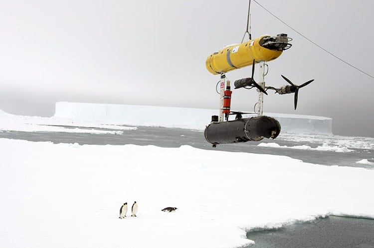 WHOI_deploying_seabed_antarctica350_366918.jpg