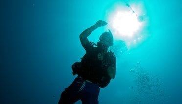 Hidden Battles on the Reefs
