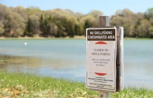 Setting a Watchman for Harmful Algal Blooms