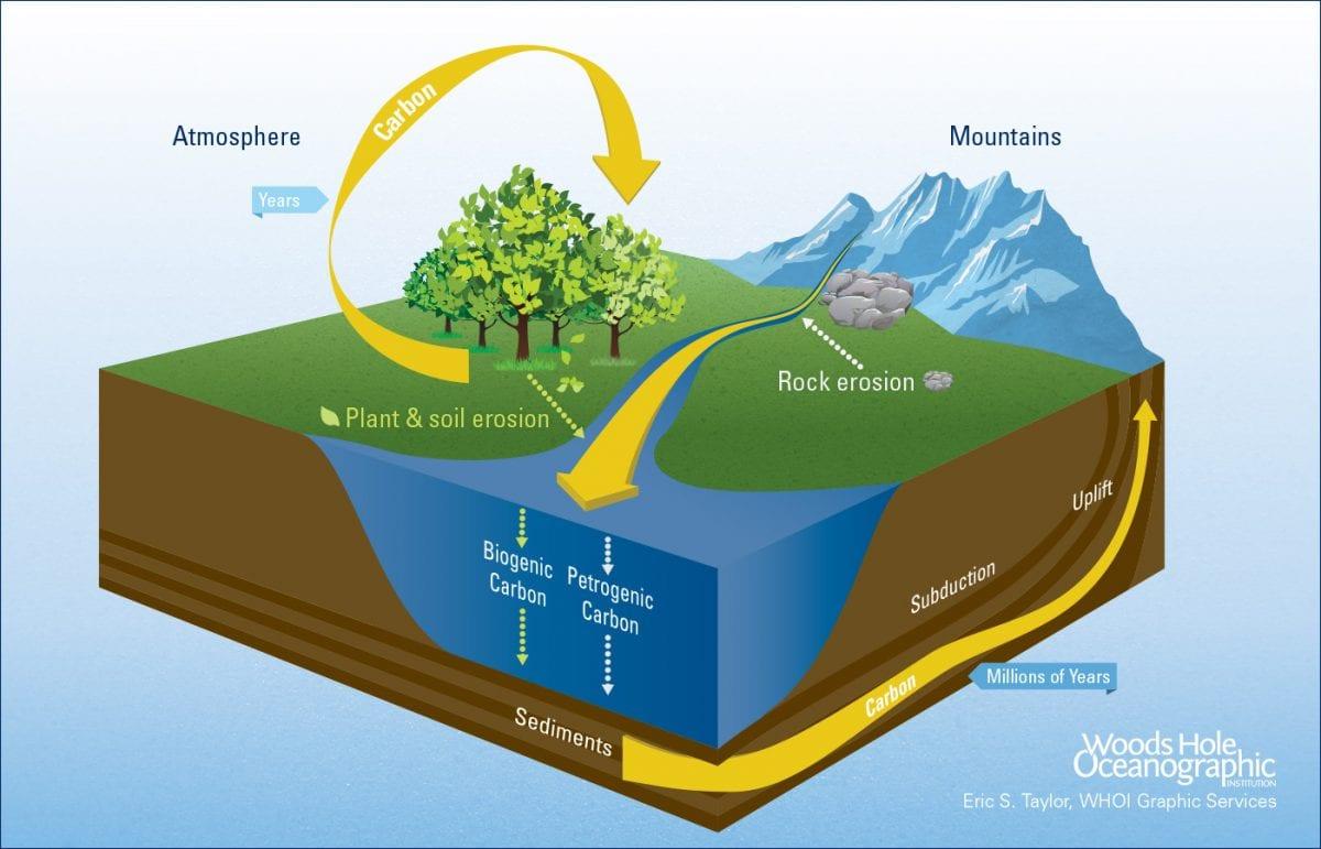 Earth's Riverine Bloodstream