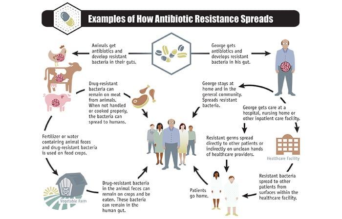 CDC-2013-Report-ar-threats-2013-508-2_418673.jpg