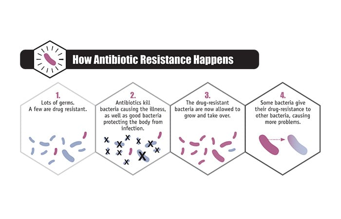 CDC-2013-Report-ar-threats-2013-508_418693.jpg