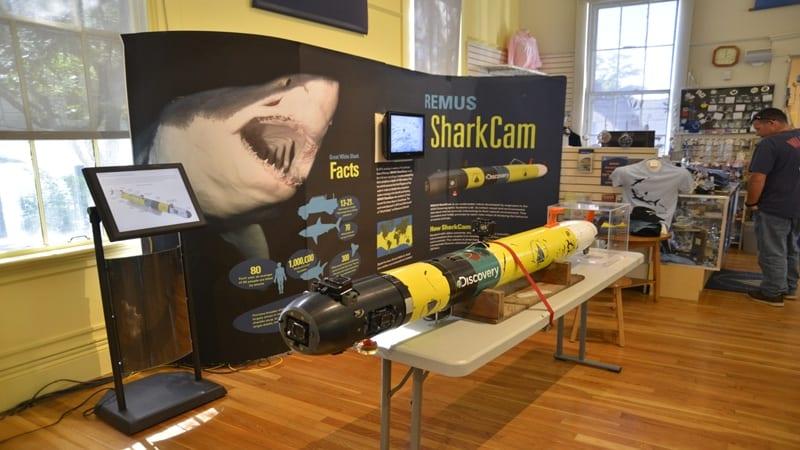 REMUS SharkCam Display