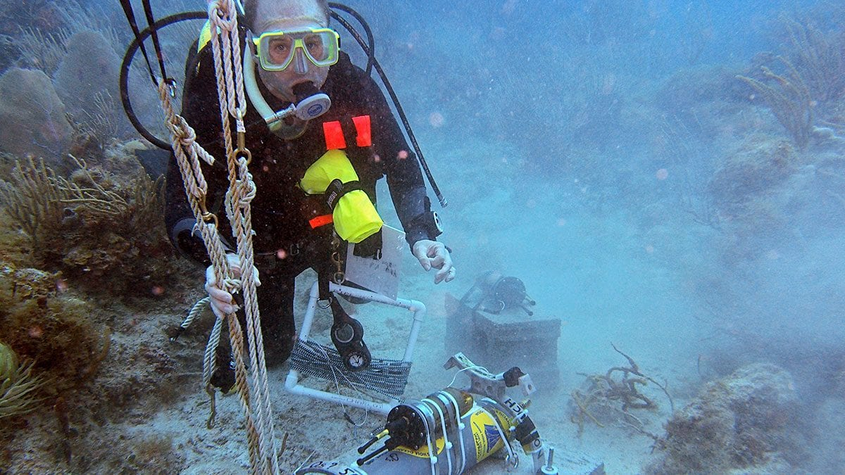 RH2_13APR19_underwater_TAM_066_420795-16x9_429217.jpg